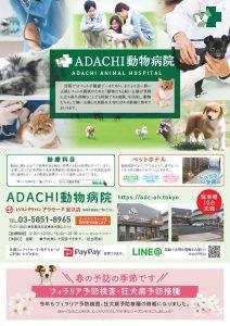 ADACHI動物病院春の予防チラシ