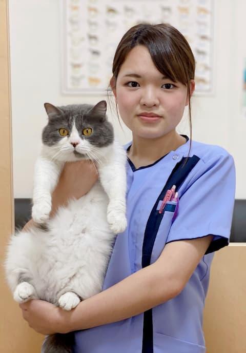 看護師 力石 柊 【動物看護師統一認定看護師】