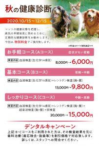 ADACHI動物病院様-健康診断はがき